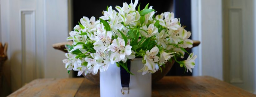 Flowers-Treat-Yourself