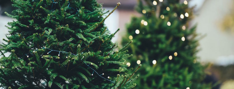 christmas-tree-disposal-delivery